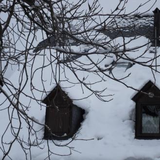 Toitures chargées de neige