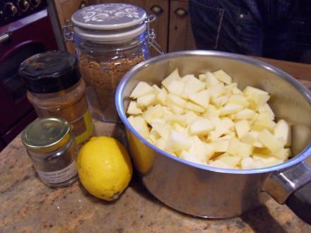 Les pommes coupées en dés et les ingrédients à ajouter