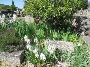 La tombe d'Albert Camus