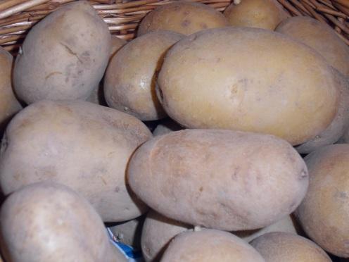 les pommes de terre agatha