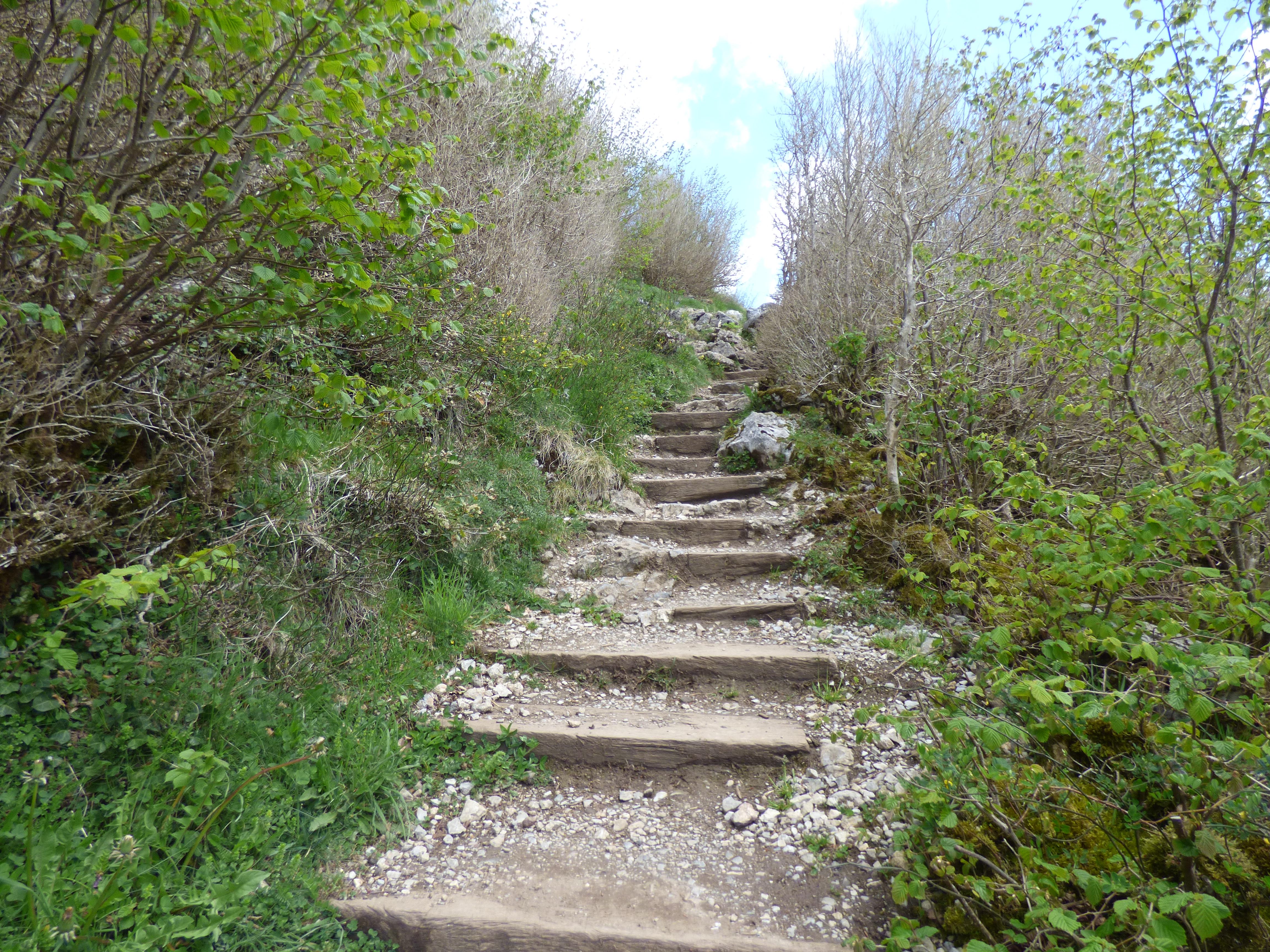 Le chemin de Montségur